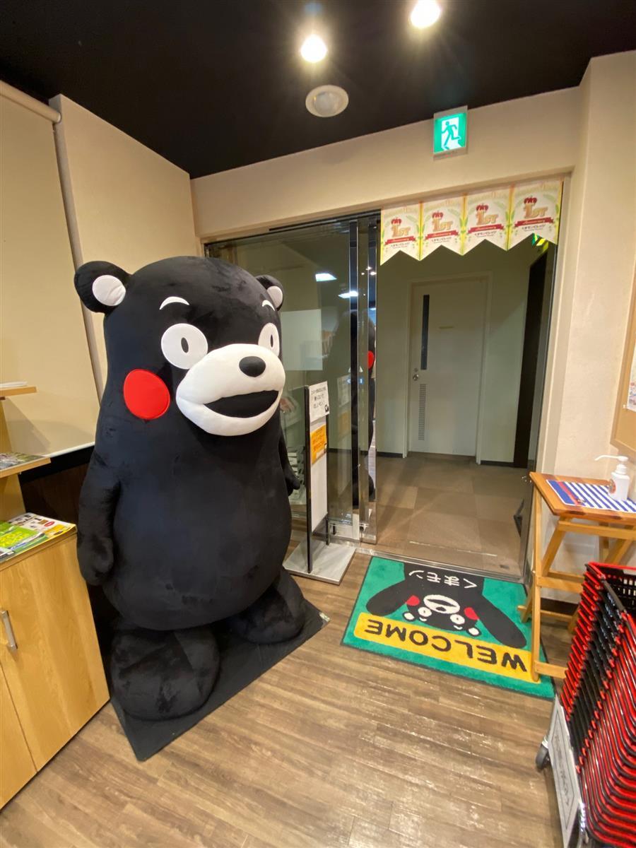 銀座熊本館2階で展示中のくまモンぬいぐるみ