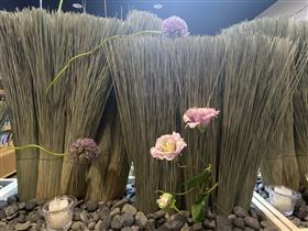 いぐさ×熊本の花(2)